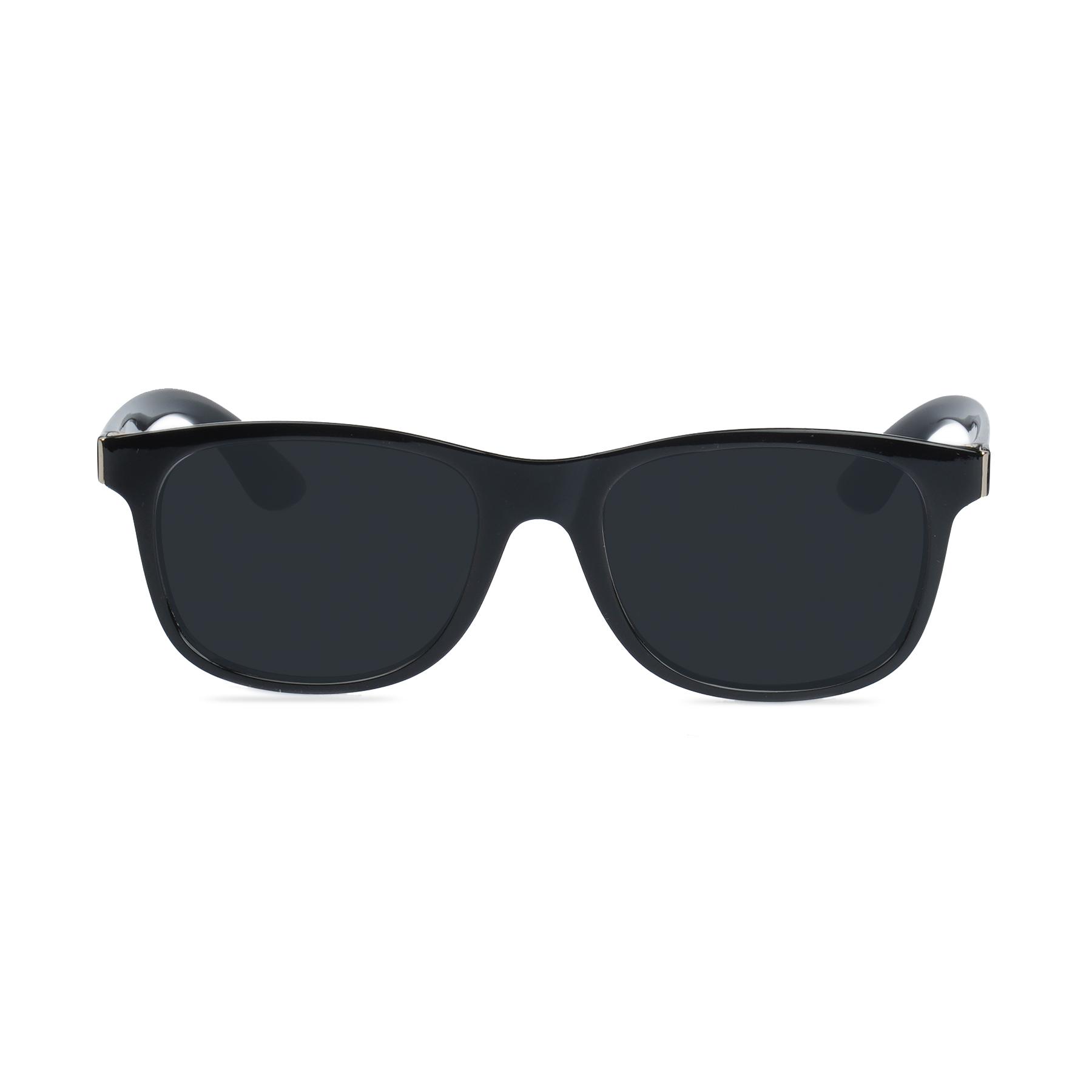Evoke Roma Sunglasses